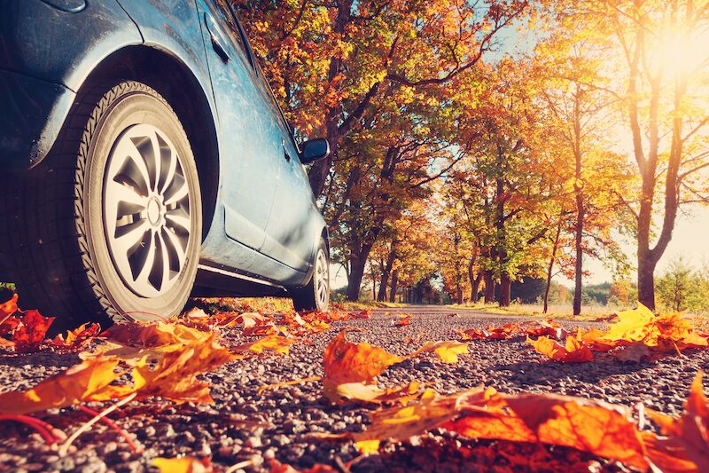 car driving on fall road, fall driving safety tips
